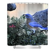 Bluebird Christmas Wreath Shower Curtain