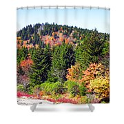 Blueridge Parkway View Near Mm 423 Shower Curtain