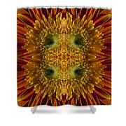 Blumen Art Shower Curtain