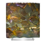 Blurred Image Of Fish Swimming In An Shower Curtain