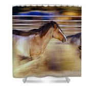 Blurred View Of Horses Running Through Shower Curtain