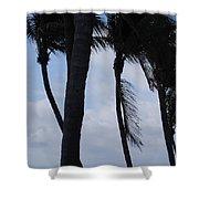 Blustery Beach At Dawn Shower Curtain