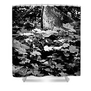 Boat In The Landscape II Shower Curtain