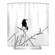 Boattail Grackle Shower Curtain