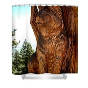 Bobcat Sentinel Shower Curtain