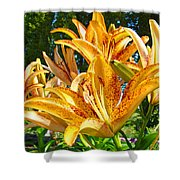Bold Colorful Orange Lily Flowers Garden Shower Curtain