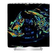 Tb Cosmic Swirl Shower Curtain