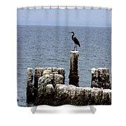 Bombay Beach Shower Curtain
