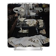 Bone Heads Shower Curtain