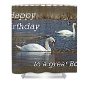 Boss Birthday Card - Mute Swans On Winter Pond Shower Curtain