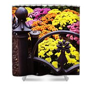 Boston Flowers Shower Curtain