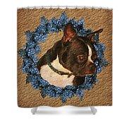 Boston Terrier Love Shower Curtain