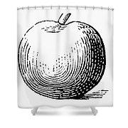 Botany: Apple Shower Curtain
