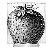 Botany: Strawberry Shower Curtain