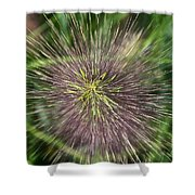 Bottle Brush By Nature Shower Curtain