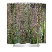 Bottle Brush Grass Shower Curtain