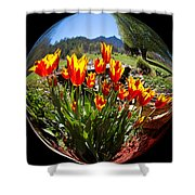 Bouquet In A Bubble Shower Curtain