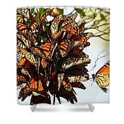 Bouquet Of Butterflies Shower Curtain