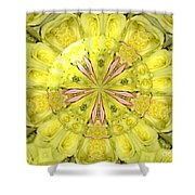 Bouquet Of Roses Kaleidoscope 12 Shower Curtain