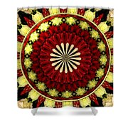 Bouquet Of Roses Kaleidoscope 5 Shower Curtain