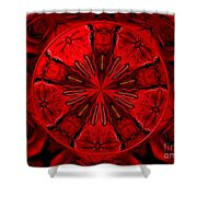 Bouquet Of Roses Kaleidoscope 6 Shower Curtain