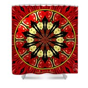 Bouquet Of Roses Kaleidoscope 8 Shower Curtain