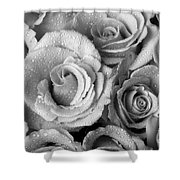 Bouquet Of Roses With Water Drops In Black And White Shower Curtain