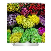 Bouquets  Shower Curtain
