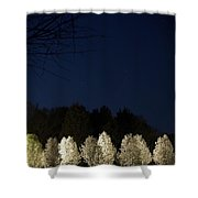 Bradford Pear Trees, Tennessee, Usa Shower Curtain