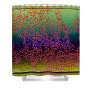 Branches In The Mist Shower Curtain