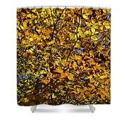 Branches Of Gold Shower Curtain