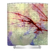 Branches Poised For Takeoff Shower Curtain