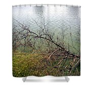 Branchs Over The Waters Edge 2001 Shower Curtain