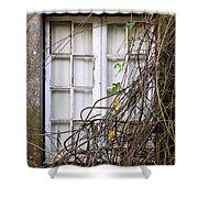 Branchy Window Shower Curtain