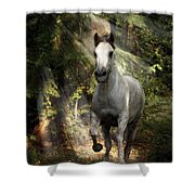 Breaking Dawn Gallop Shower Curtain