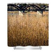 Bridge And Pampas Grass Shower Curtain