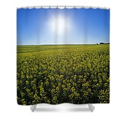 Bright Sun And Bloom Stage Mustard Shower Curtain