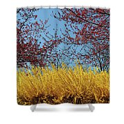 Brightly Comes The Spring Shower Curtain