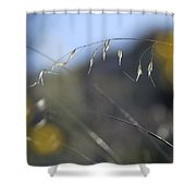 Brillante Shower Curtain