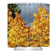 Brilliance Before The Storm Shower Curtain