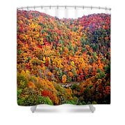 Brilliant Color Trees Shower Curtain