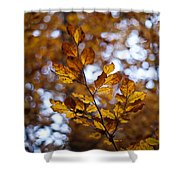Brilliant Leaves Shower Curtain