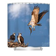 Bringing Breakfast Home Shower Curtain