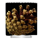Close Up Of Pinecone Shower Curtain