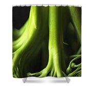 Broccoli Abstract Shower Curtain