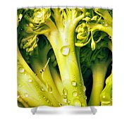 Broccoli Scape I Shower Curtain