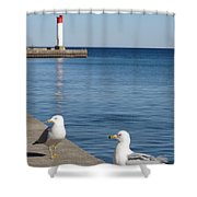 Bronte Lighthouse Gulls Shower Curtain