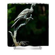 Bronze Cormorant Shower Curtain