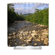 Brook 1 Shower Curtain