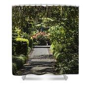 Brookgreen Gardens Path Shower Curtain